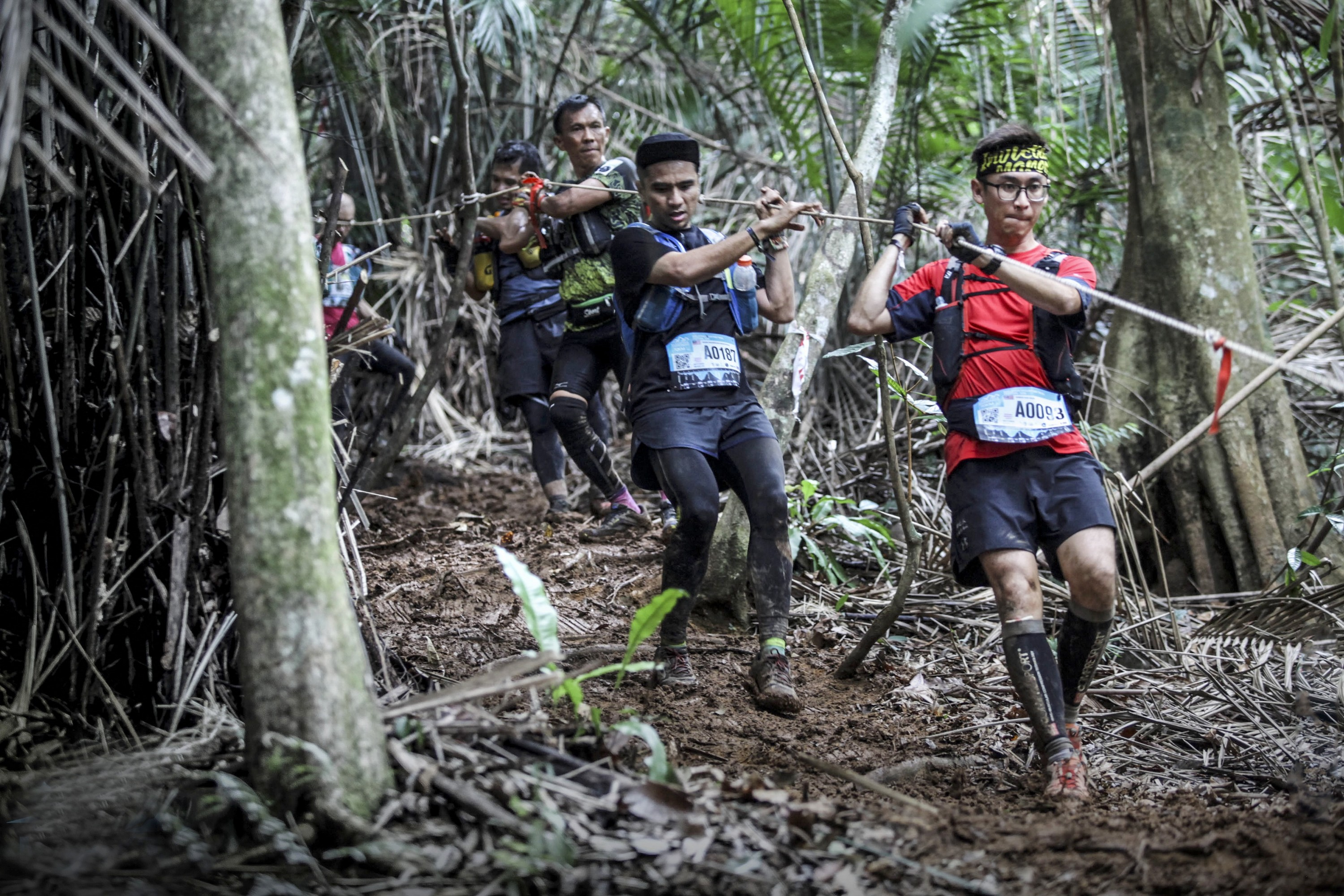 3) MMTF 2018 - Runners making their way in the forest trail (1)